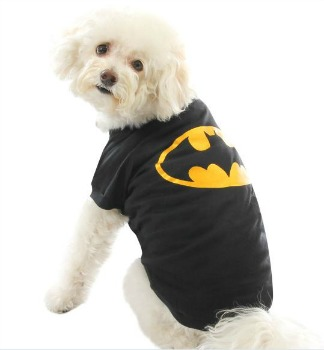 PetSmart Batman