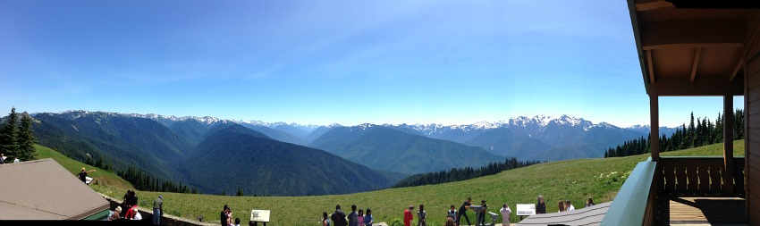 hurricane ridge view