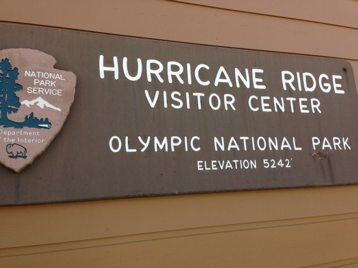 hurricane ridge visitors center