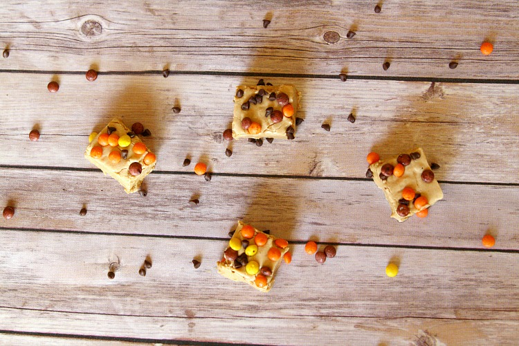 Halloween Fudge Bites