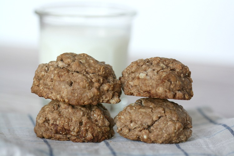 cinnamon-oatmeal-cookies