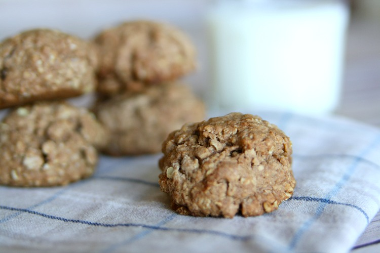fall-cookies-chocolate-cinnamon-oatmeal-cookies