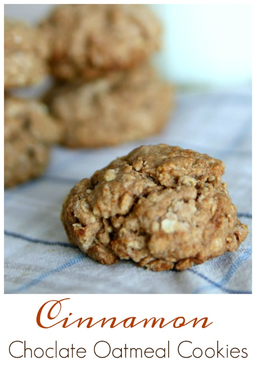 oatmeal-cookies-with-cinnamon