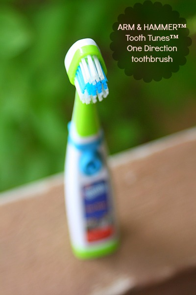 one direction toothbrush