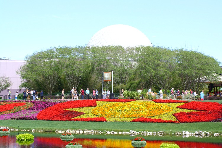 epcot_flowers