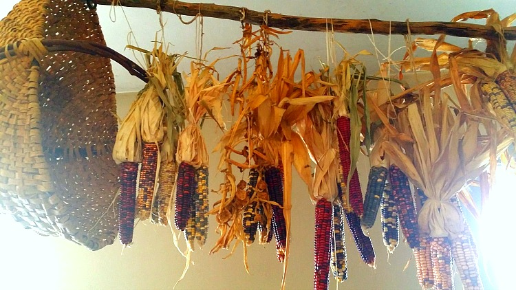 Hanging Corn at Fort Snelling